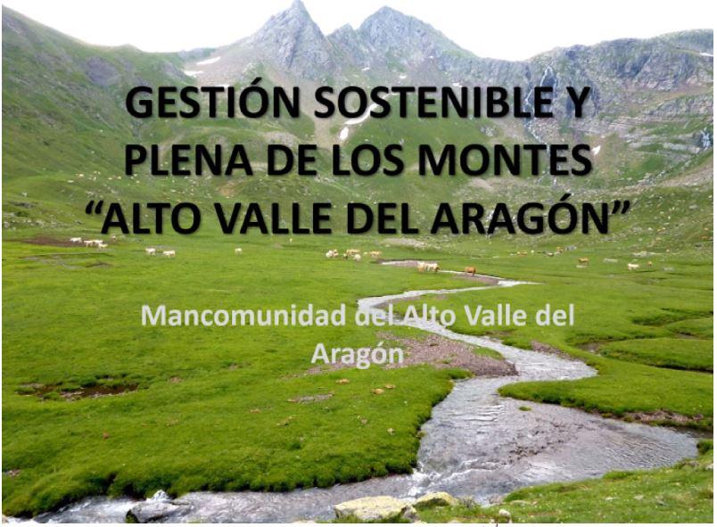 Proyecto «GESTIÓN SOSTENIBLE Y PLENA DE LOS MONTES DEL ALTO VALLE DEL ARAGÓN»